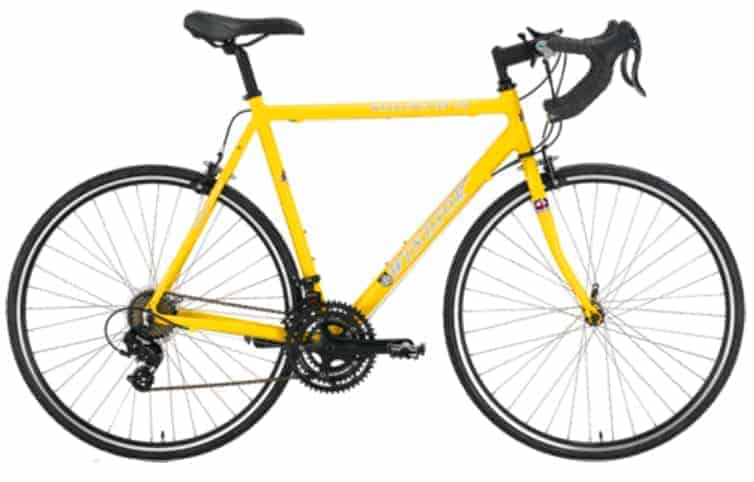 our review on Windsor Wellington 2.0  bike
